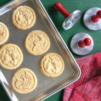 Nordic Ware - Yuletide Cookie Stamps